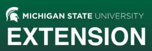 Top Ten Credit Tips-MSU Extension webinar